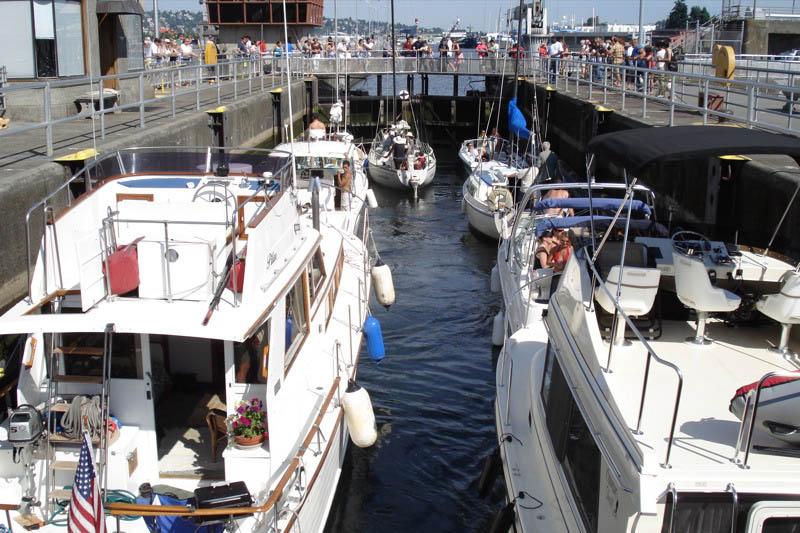Go through the historic Ballard Locks and become one of the tourist attractions yourself aboard sailing vessel Bimi or yacht Splendido.